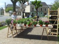 marché aux fleurs 2008