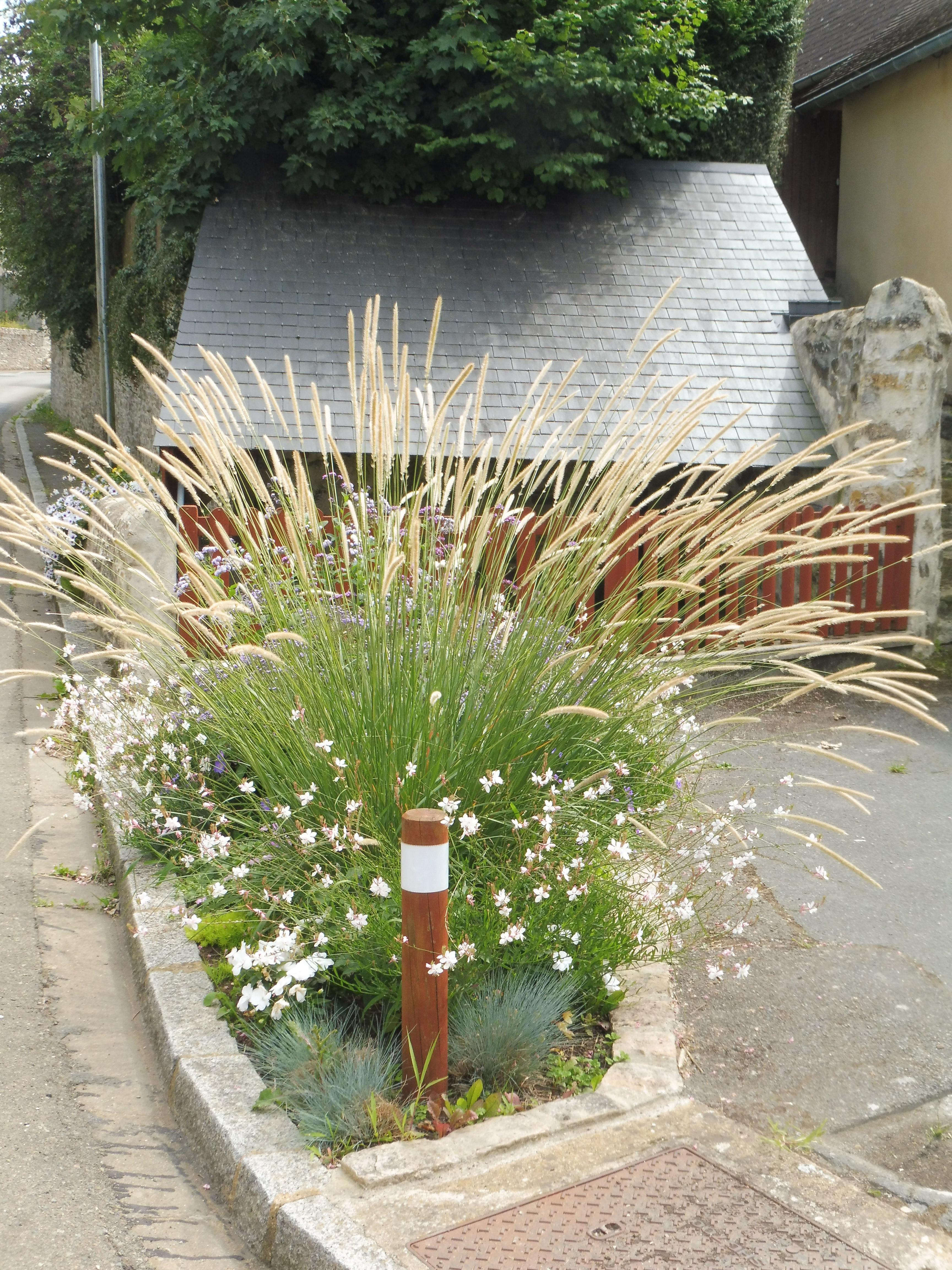 Fleurissement de l'été 2017 (classé 3 fleurs) : quelques images
