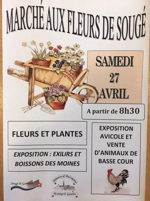 Marché aux fleurs et aux plants 2019