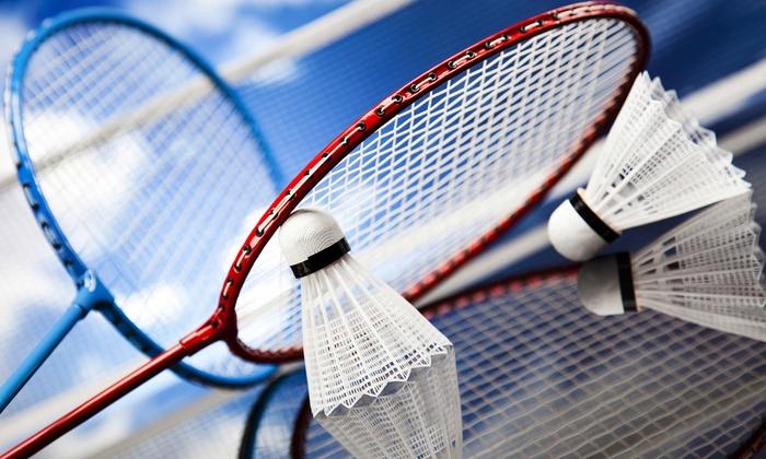 Le Conseil municipal se forme au badminton